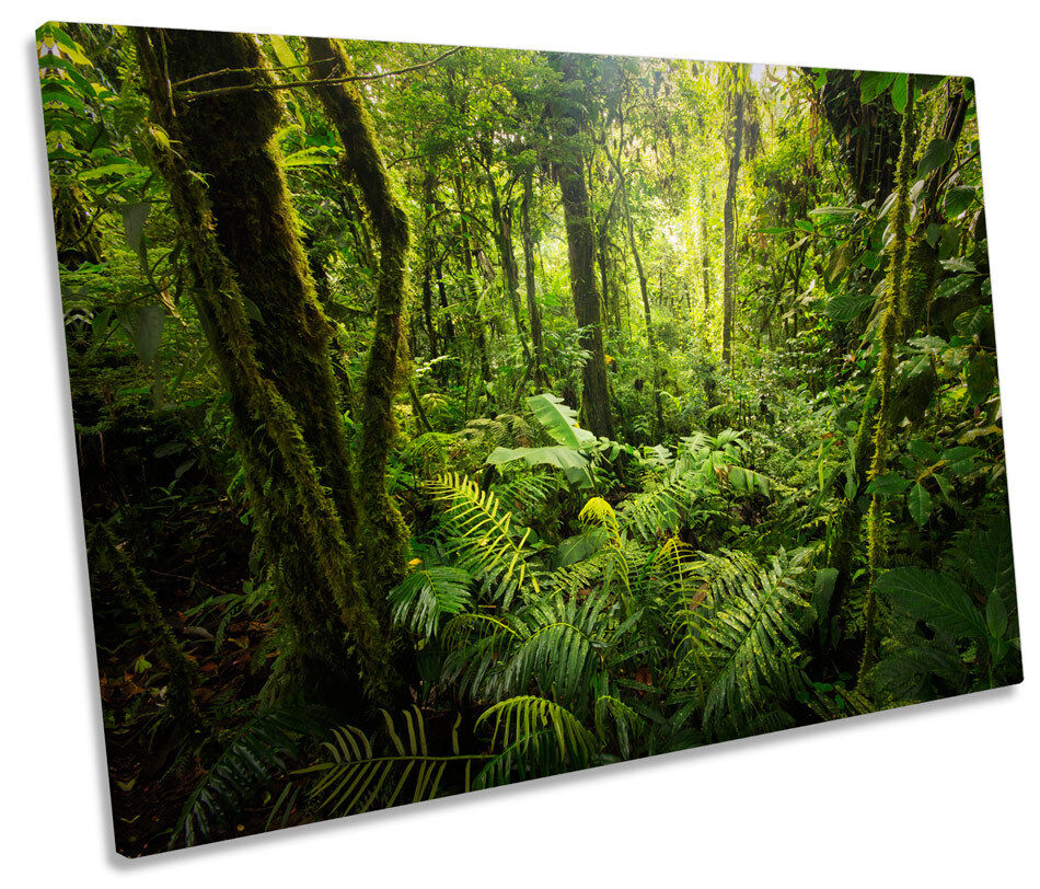 Forest Landscape Grün Trees CANVAS WALL ART Picture Print Single