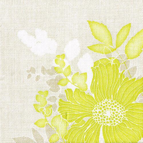 doblado 40 cm verde Annabel premium de tela similar a 50 servilletas Royal Collection 1//4