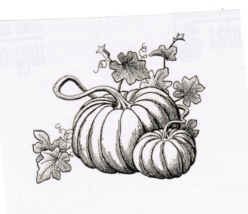 Harvest  /& Fall Pumpkin Scene UnMounted rubber Fabulous for Thanksgiving