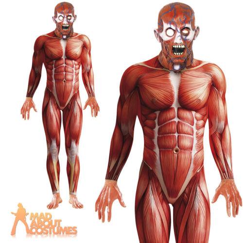 Anatomy Man Costume Halloween Second Skin Fancy Dress Mens Muscle Body Suit New