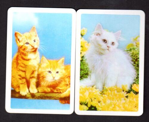 BLANK BACKS Lovely Kittens Pair Vintage Swap Cards