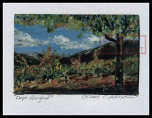 Napa-Vineyard-Vines-trees-Signed-ART-PRINT-Cathy-Peterson-LISTED-ARTIST