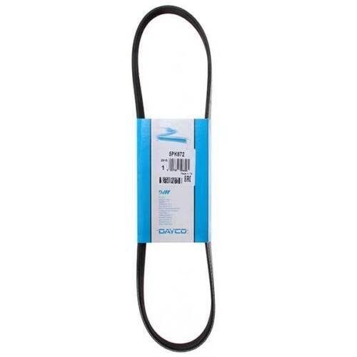 Ventilateur ceinture convient SUBARU LEGACY FORESTER ROVER 75 Mitsubishi-DAYCO 5PK869