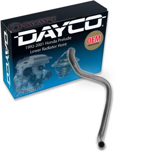 Engine tw Dayco Lower Radiator Hose for 1992-2001 Honda Prelude 2.3L 2.2L L4