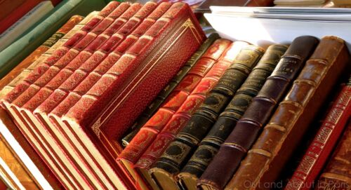 Guide Books Scanned Many Reference HOW TO COLLECT BOOKS Disc or Download