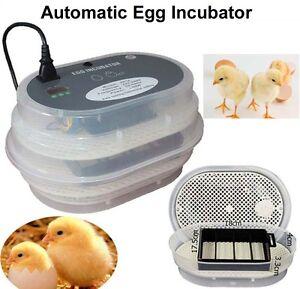 Automatic-Chicken-12-Egg-Incubator-Home-Duck-Quail-Bird-Incubator-Mini-Hatcher