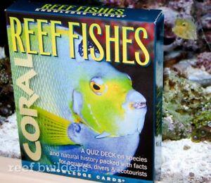 Reef Fishes Educational Photo Flash Cards Quiz Deck Study Science Marine Biology Ebay
