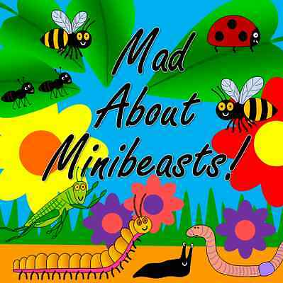 minibeasts MINI BEASTS Early years teaching resources on CD  EYFS childminder