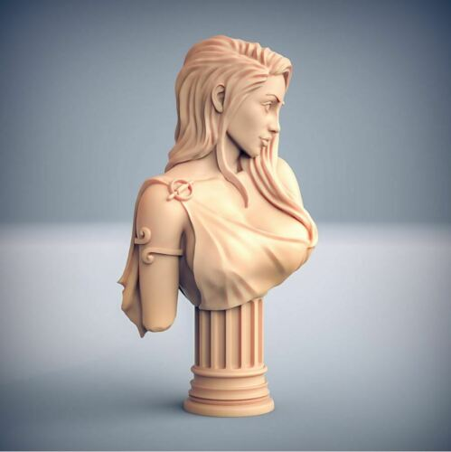 Bust of VENUS for collectors and painters