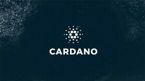 50-Cardano-ADA-CRYPTO-MINING-CONTRACT-50-ADA