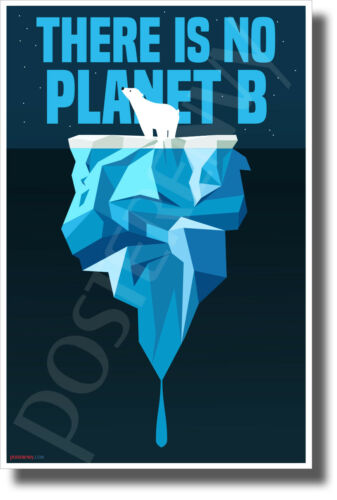 There Is No Planet B Polar Bear New Environmental Awareness POSTER