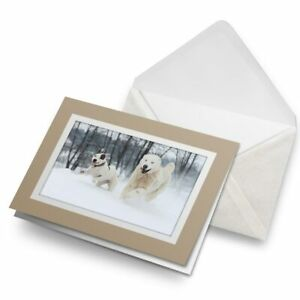 Greetings-Card-Biege-Adorable-Happy-Dogs-in-Snow-3033