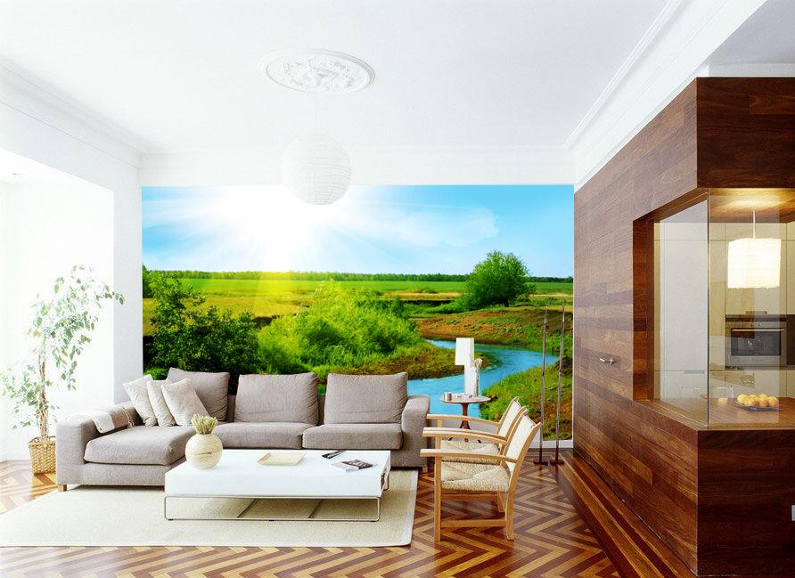 3D Sun ed erba 22 Parete Murale Foto Carta da parati immagine sfondo muro stampa