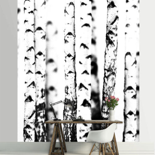Nappes Papier Peint papiers peints photos papier peint forêt arbre Le BOULEAU nature blanc bois 14n2234vea