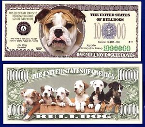 50 Boxer Dog Collectible K9 Novelty Money Bills Lot