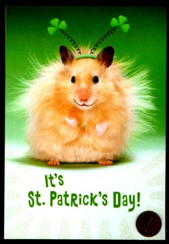 Patrick/'s  Day Hamster Clovers GLITTERED St Patrick/'s Day Greeting Card St