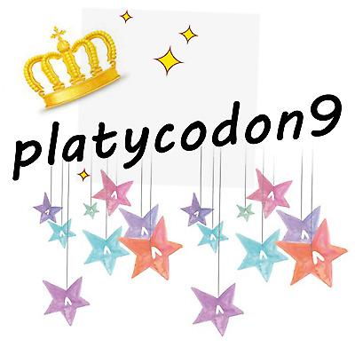 platycodon9