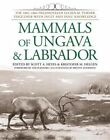 Mammals of Ungava and Labrador: The 1882-1884 Fieldnotes of Lucien M. Turner Together with Inuit and Innu Knowledge by Smithsonian Books (Hardback, 2014)