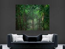 Cartel de Árboles Forestales Naturaleza impresión de imágenes De Pared Gigante Grande