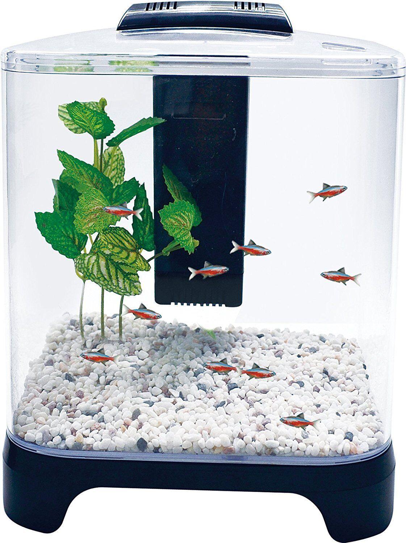 Penn Plax Betta Fish Tank Aquarium Kit With LED Light and Internal Filter