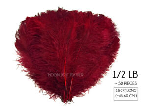 """1//2 Lb 18-24/"""" Orange Ostrich Wing Plumes Wholesale Feathers Halloween Costume"""