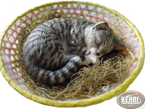 Ceramica Gatto Decorativa Il Lavoro Manuale Gatti