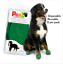 thumbnail 24 - Pawz Rubber Dog Shoes Wound Relief Re-usable And Sold In Singles,2,4,8 or 12s