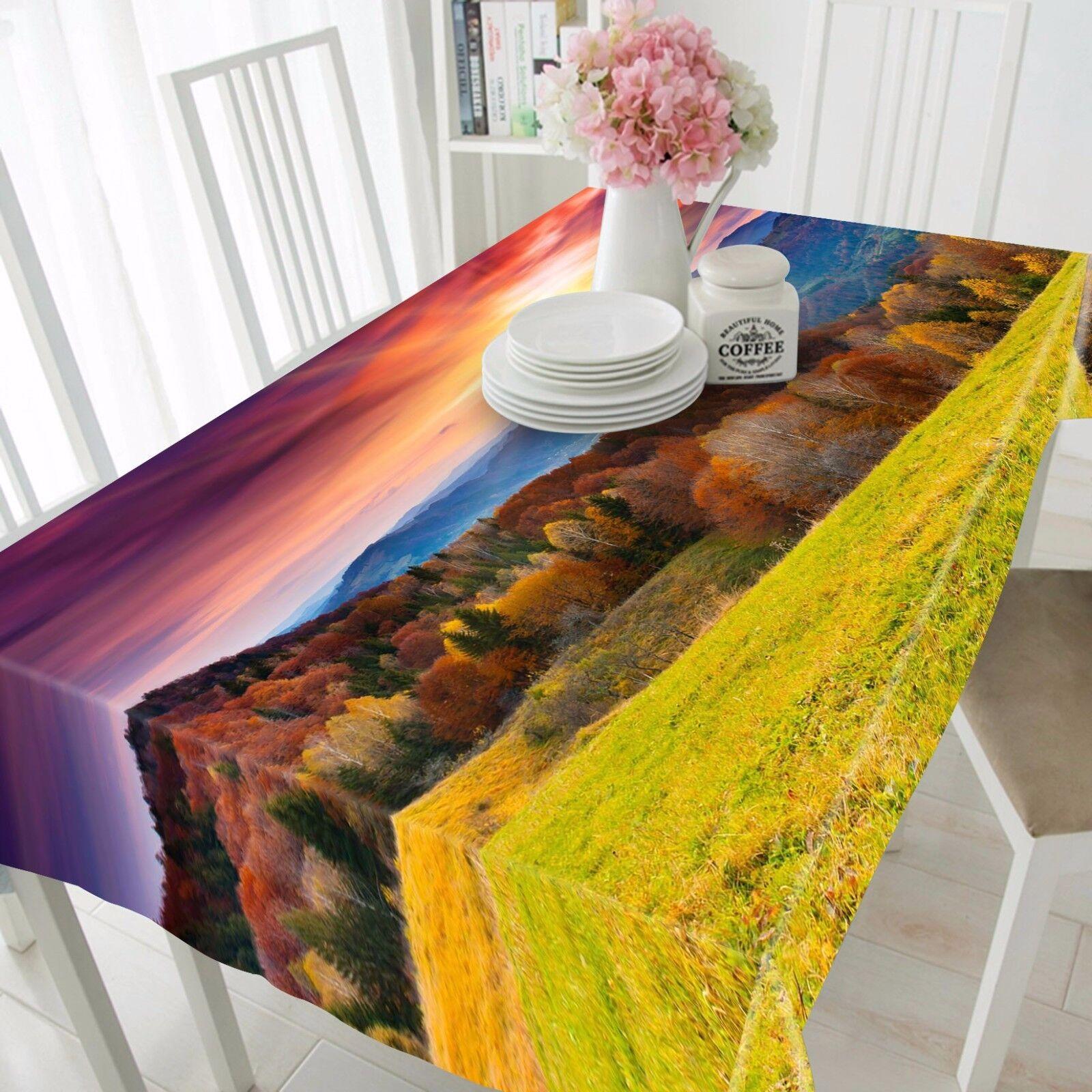 3D Sun 4945 Tablecloth Table Cover Cloth Birthday Party Event AJ WALLPAPER AU