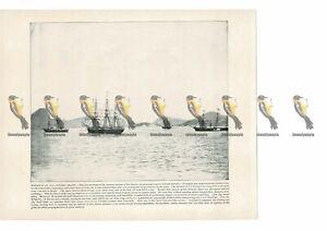 Rio-Janeiro-Harbour-Brazil-Book-Illustration-Print-1899