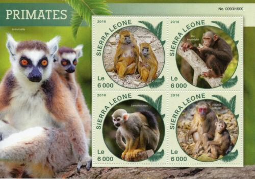 Sierra Leone 2016 MNH Primates 4v M/S Wild Animals Monkeys Chimpanzee Stamps