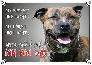 Bouclier de chien - Garde de bouclier en métal Staffordshire Terrier