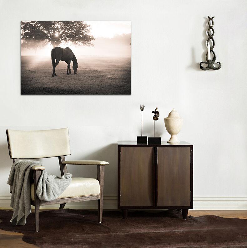 3D Sonnen Baum Pferd Prairie 86 Fototapeten Wandbild BildTapete AJSTORE DE Lemon   Die Farbe ist sehr auffällig    Um Sowohl Die Qualität Der Zähigkeit Und Härte    Deutschland Shop