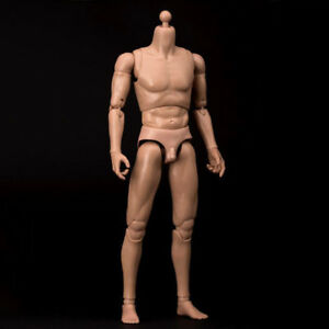 WorldBox-AT011-12-034-MALE-Muscular-Male-Body-Figure-Model-Ver-For-1-6-Head-Sculpt