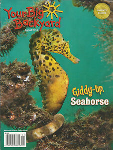 Exceptionnel Image Is Loading Your Big Backyard Magazine Seahorse Animals Heat And
