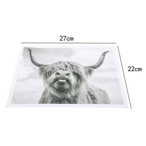 Picture Black/&White Cow Closeup Oil Cloth Painting Wall Art Painting Hanging CP