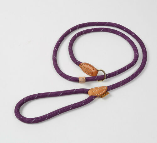 """Digby /& Fox Nylon Reflective Dog Slip Lead 147cm//58/"""" Strong /& Bright Colours"""