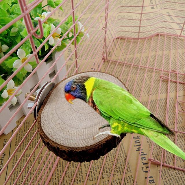 Parrot Pet Bird Round Wooden Hanging Stand Perch Platform Toy Cockatiel Funny1xP