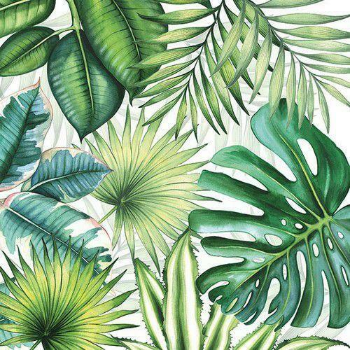 5 Napkins Tropical Leaves 33x33cm Tissue Decoupage Paper Party Card Making Craft