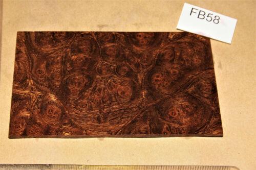 1 plaque door plate orme Maser Marron stabilisé 130x79x3mm PUQ fb58