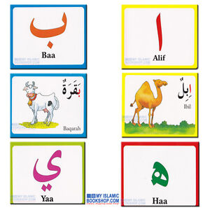151136931763 on Arabic Alphabet Flashcards
