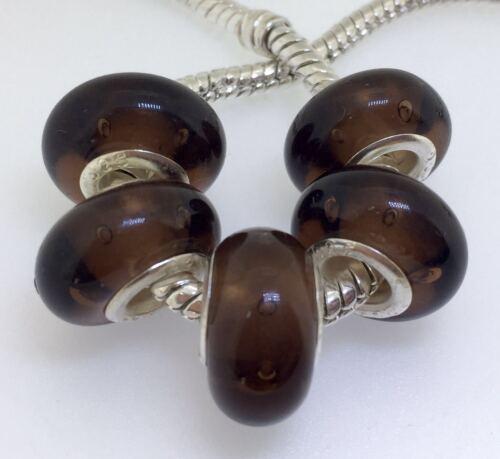 5PCS Silver Murano Lampwork Glass Beads fit European Charm Bracelet IL136