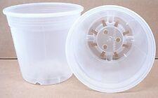 Clear Plastic Pot for Orchids 6 inch Diameter - Quantity 2