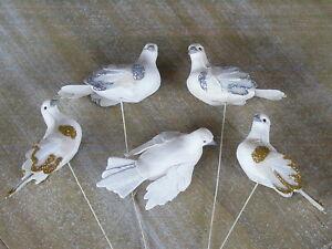 Weisse Taube Hochzeit Silberhochzeit Goldene Hochzeit Ebay