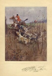 FOX HUNTING HORSES AND HOUNDS JUMPING THE FENCE DOGS SPORTSMEN HARRIERS VINTAGE