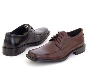 Mens-Leather-Dress-Shoes-Lace-Up-Oxfords-by-Delli-Aldo-Free-Shoe-Horn-Dust-Bag