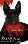 Black Dog by Matt Syverson (Paperback / softback, 2011)