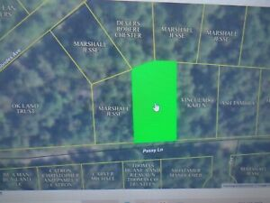 13233sq ft (.3038 acre) Briarcliff, AR- 1/2 mile to Norfork Lake POWER CLOSE BY!