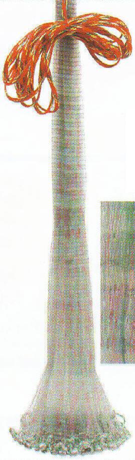 Betts 6C 6 ft. Camo No Spook Old Salt Cast Net 6Lb 3 8  Mesh 12936
