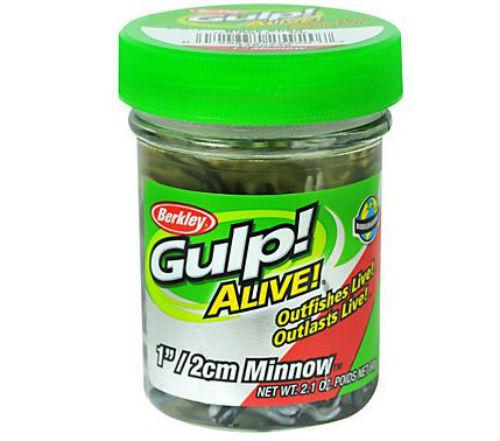 """Minnow Soft Bait 1/"""" Length Luma Glow 1160755 Alive Berkley Gulp"""