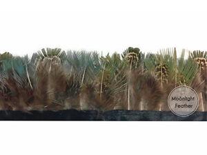 1 Yd (environ 0.91 M) - Vert Amande Perruche Faisan Plumage Feather Trim-afficher Le Titre D'origine